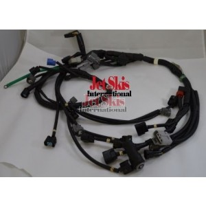 2005-2007 F12X Injector and Ignition Coil Sub-Harness
