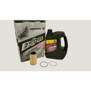 Sea Doo Maintenance Kit 295501157